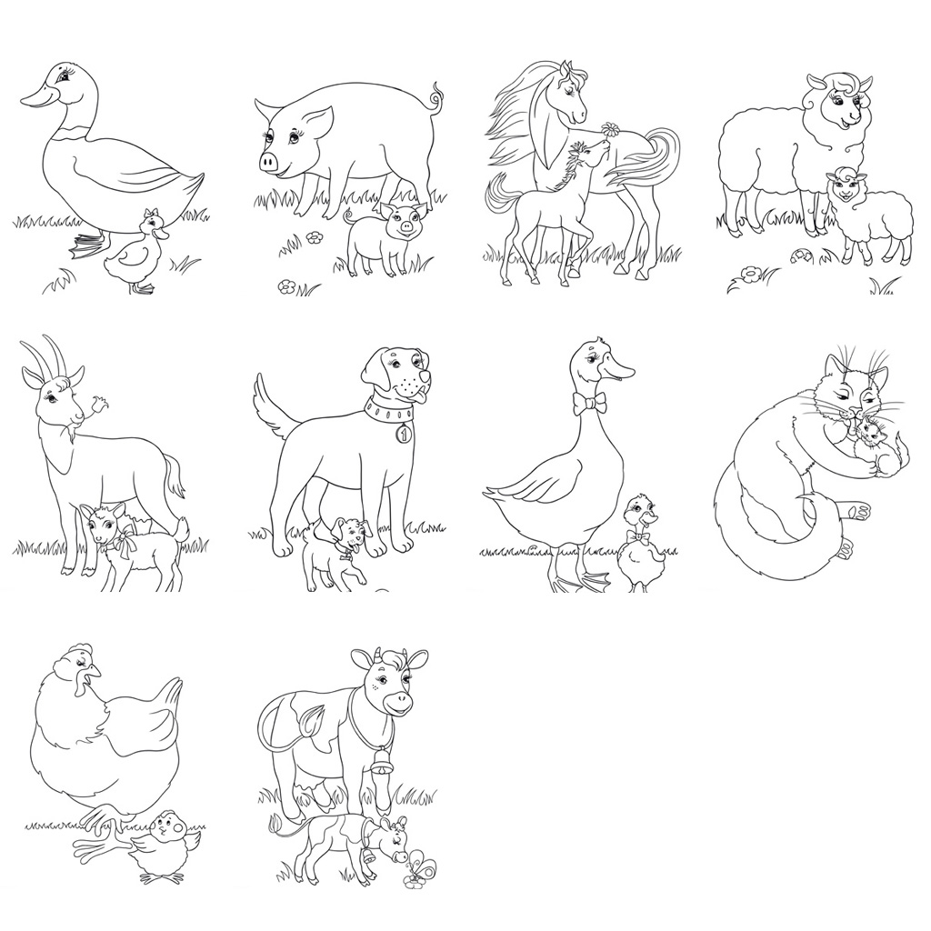 Farm Animal Worksheets And Activities Buylapbook