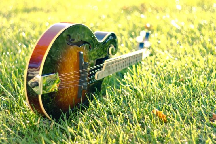 The Loar LM-520-VS Mandolin | Buy Mandolins