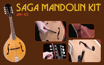 Best mandolin kit build your own buy mandolins for those that share these traits along with the desire to learn mandolin building or playing a kit can be a great way to build your own mandolin solutioingenieria Choice Image