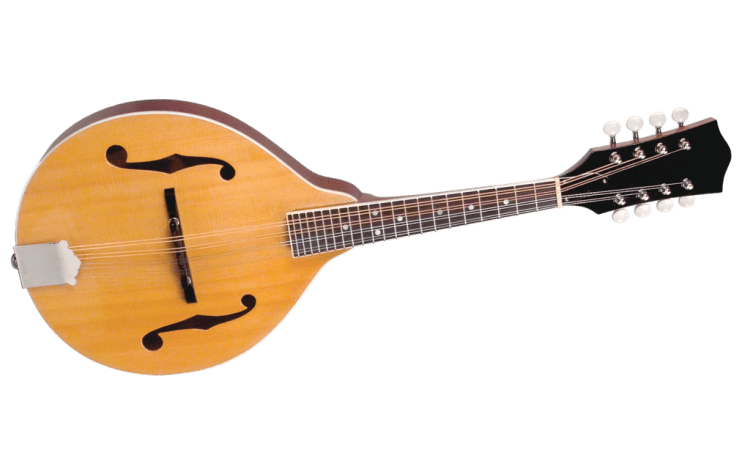 Best mandolin kit build your own buy mandolins you will need some basic tools such as a chisel scraper and clamps etc but all necessary parts are included solutioingenieria Images