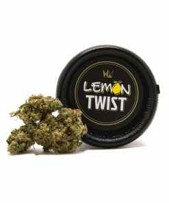 Buy lemon twist, buy lemon twist Strain, Buy lemon twist Strain by West Coast Cure, Buy lemon twist Strain West Coast Cure, Buy lemon twist West Coast Cure, buy West Coast Cure lemon twist, buy west coast cure lemon twist online, buy west coast cure online, lemon twist for Sale, lemon twist Strain for Sale, lemon twist West Coast Cure for Sale, Order lemon twist Strain, Order lemon twist West Coast Cure, order west coast cure lemon twist, PURCHASE lemon twist WEST COAST CURE, Shop lemon twist West Coast Cure, west coast cure, west coast cure for sale, west coast cure lemon twist, west coast cure lemon twist for sale, Where to Buy lemon twist Strain, Where to Buy lemon twist West Coast Cure