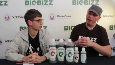 How to use BioBizz nutrients? Mr Bloom educates us in South Africa
