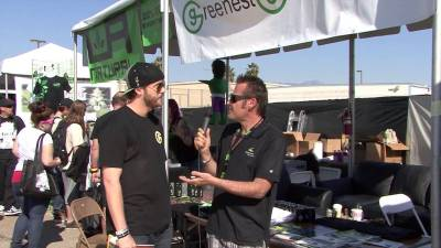 Cannabis Cup Kyle Greenest Green  talks Advanced Nutrients.mp4