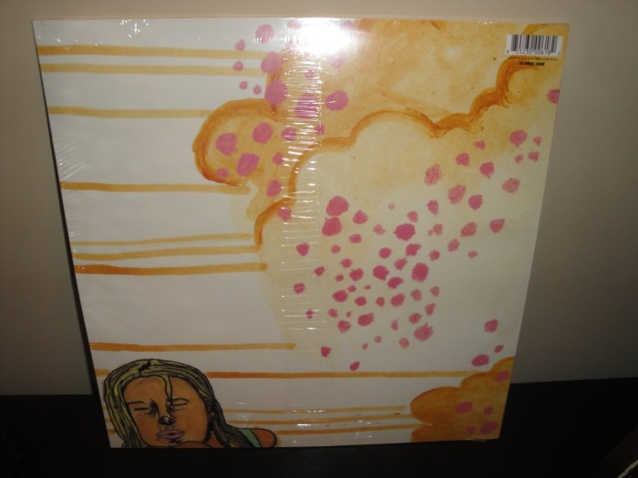 "Panda Bear ""Young Prayer"" 2017 Vinyl LP Reissue"