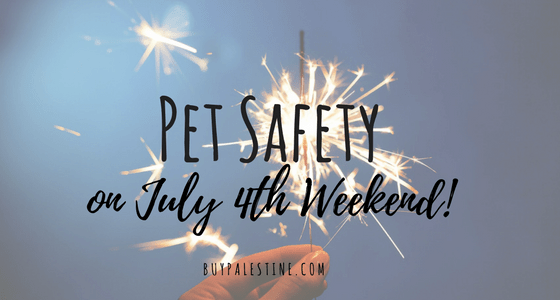 4th of July Pet Safety
