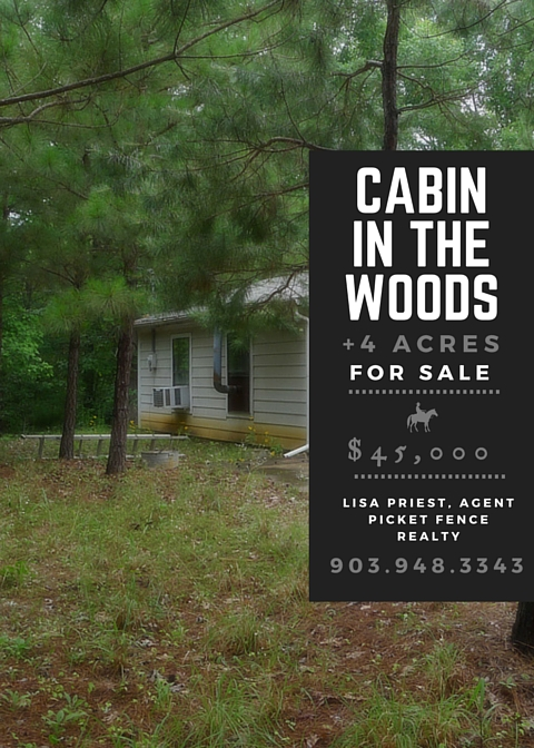 Real Estate Feature of the week: Cabin in the woods on 4 Acres in Neches, TX
