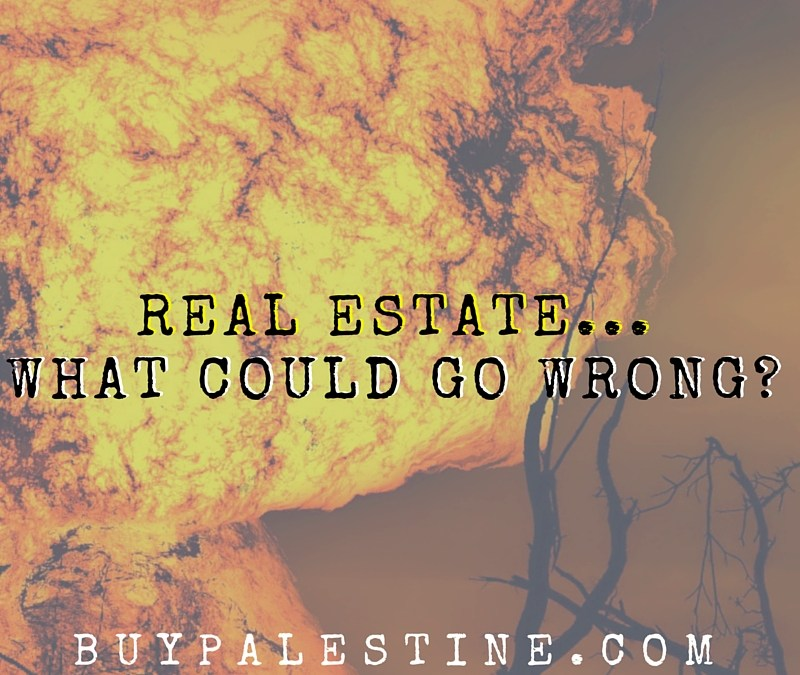 Real Estate...What Could Go Wrong?