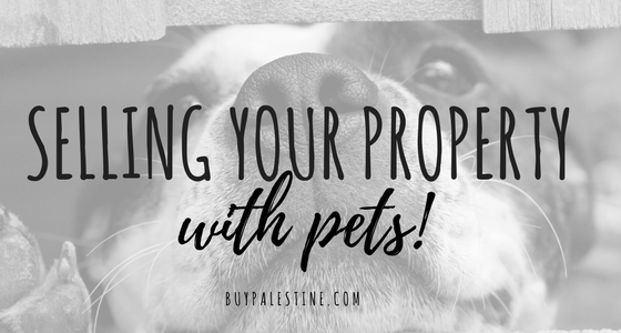 Selling Your Property with Pets