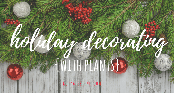 Holiday Decorating with Plants