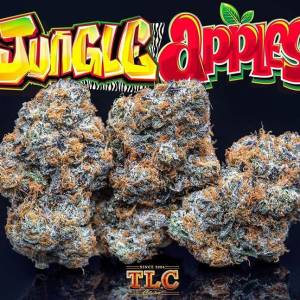 Buy Jungle Apples weed Online, jungle Apple strain for sale, order jungle boys weed, how to know fake jungleboys, jungle boys flavors