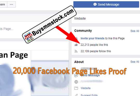 20000 Facebook Page likes proof