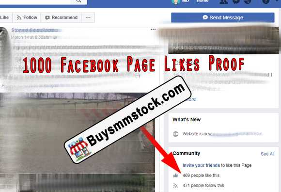 400 Facebook Page likes proof