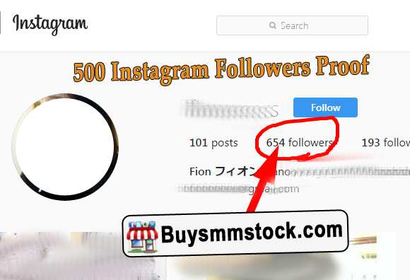 500 Instagram Followers Proof