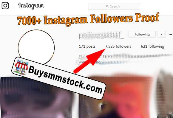 7000+ Instagram Followers