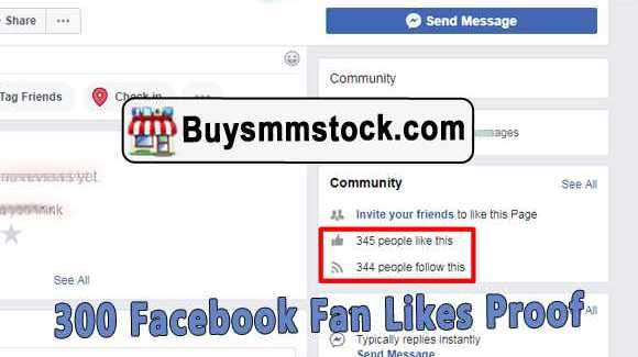 300 Facebook Page likes proof