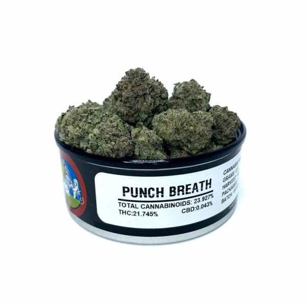 Punch Breath (Greenhouse)