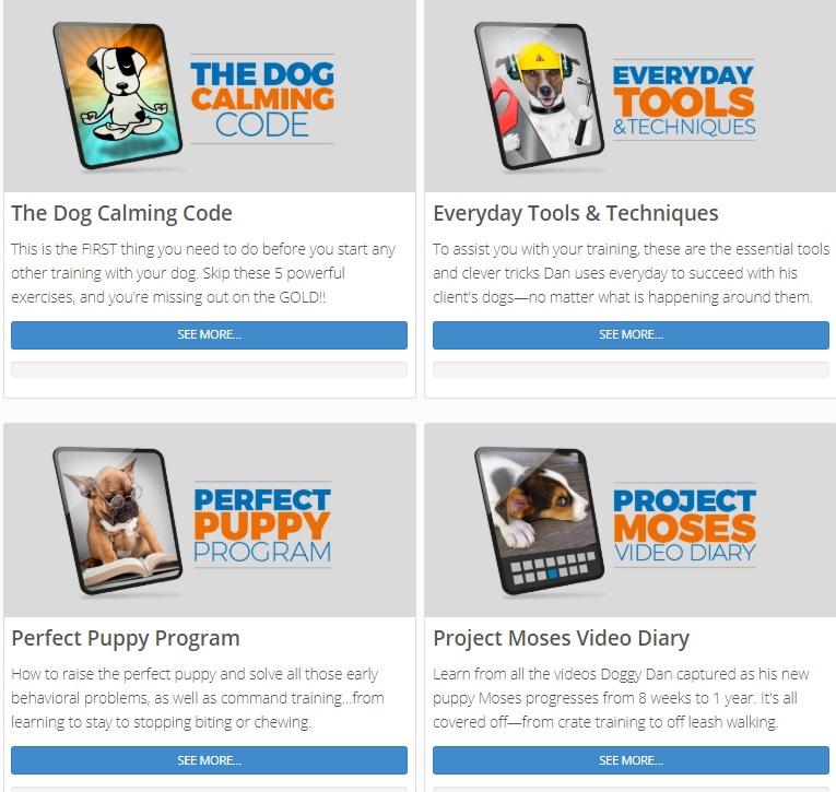 Doggy Dan Courses