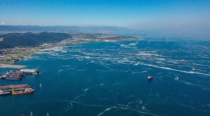 Müsilaj olmasının sebebi nedir, neden meydana geliyor? İşte Marmara Denizi'ndeki müsilajda son durum