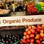 Organic Food Is Going Mainstream?