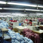 The Role of Clothing and Textile Industries