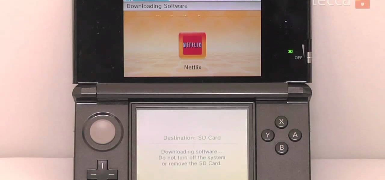 Netflix on dsi? Nintendo ds giant bomb.