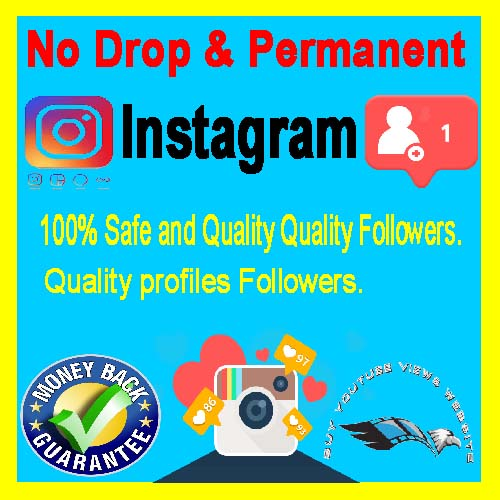 Buy Instagram Followers $1