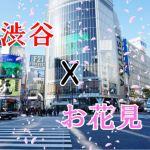 2019年渋谷周辺のお花見穴場スポット情報をお届け!どんちゃん派?まったり派?どちらもこれで完璧。