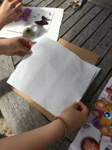 Buzymum - Cover with more absorbent paper, then card