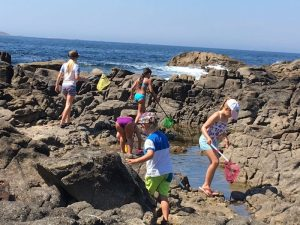 Buzymum - Rock-pooling in Baiona, Spain