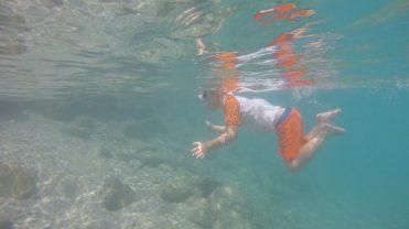 Buzymum - Great shot of the Boy snorkelling!