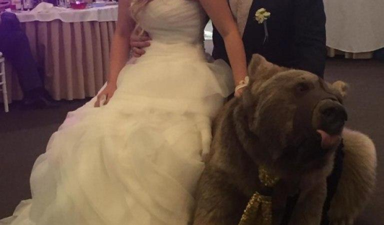 Evlilik Buysa Ömür Boyu Bekar Kalayım Dedirten 14 Komik Düğün Fotoğrafı