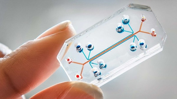 organ-chip-A-human-lung-on-a-chip.