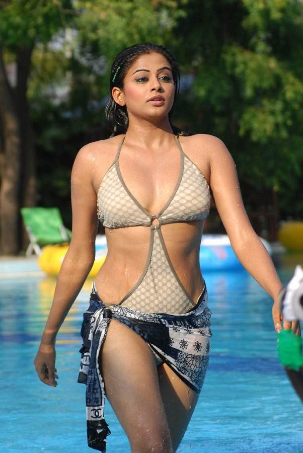 Photo Credit http://www.actresshotphotos.in/2013/07/actress-priyamani-hot-photos.html