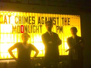 Crimes Against the Moonlight