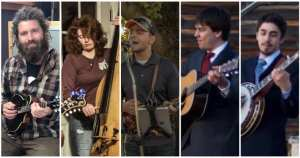 backyard bluegrass