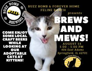 Brew and Mews