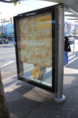 A cheese ad on a Commercial-Broadway bus shelter.