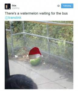 Watermelon waiting for bus