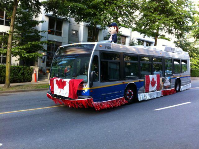 Translink 555 bus schedule-8688
