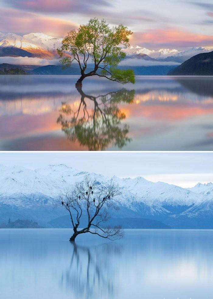 Lake Wanaka, Yeni Zelanda