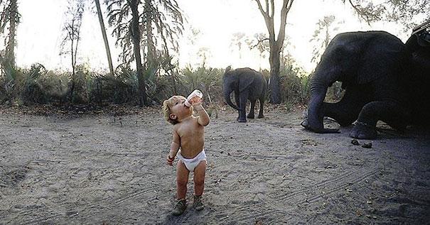 afrika-vahsi-yasam-fotograflari-patiliyo-2