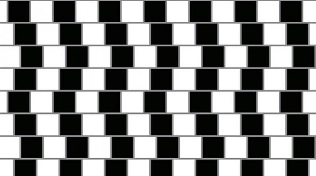 錯覚実験 (11)