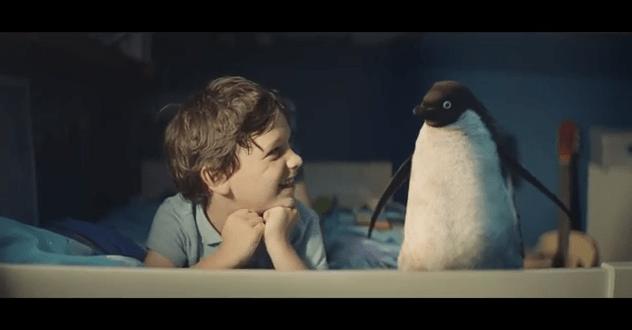 ペンギンと男の子の友情