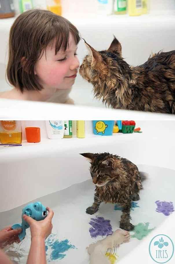 cat-loves-water-bath-421__605_R