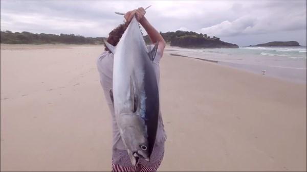 tuna12_R