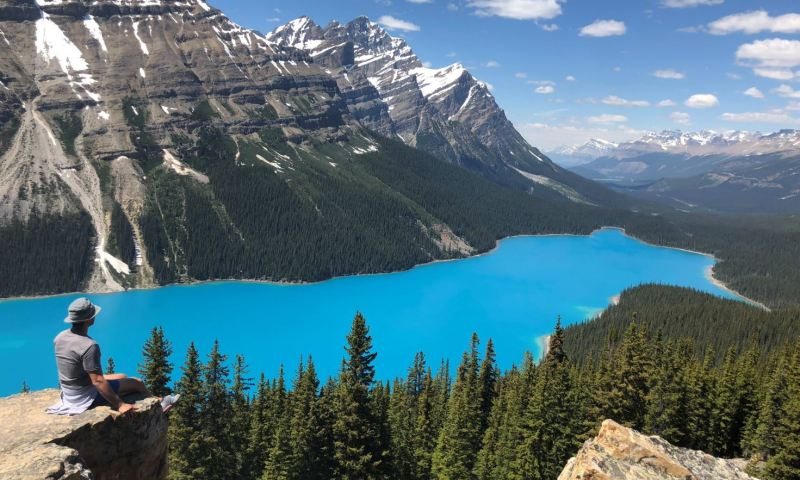 Peyto Lake Bluest Waters In the World