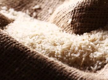 Contamination of Rice Grains