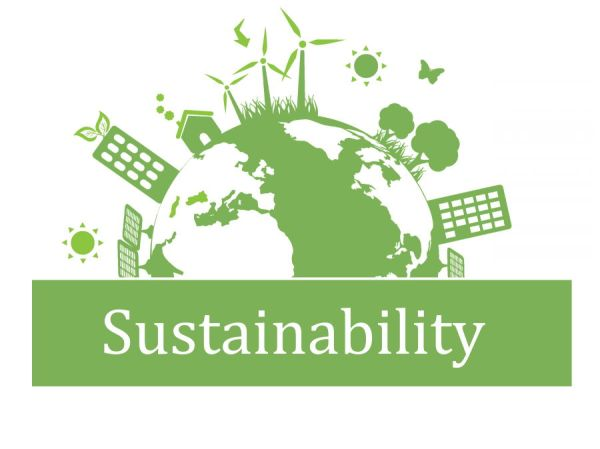 sustainability in 2020 buzzonearth