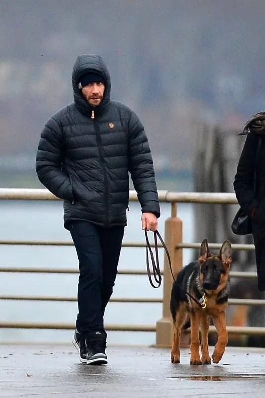 20 Celebrities Who Own German Shepherds