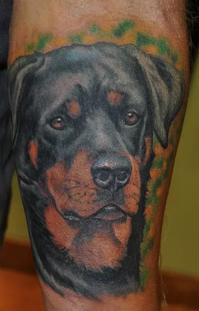 The 14 Coolest Rottweiler Tattoo Designs In The World